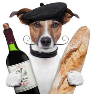 is bread good for dogs?