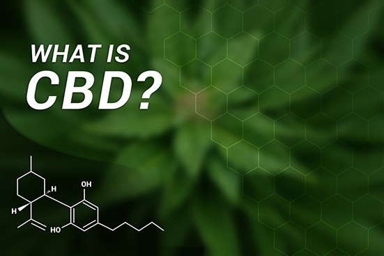 Cbd oil information