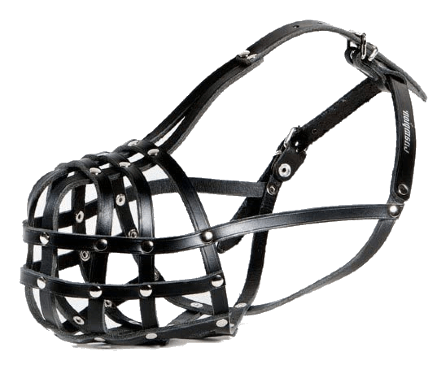 Champion Light leather Dog Muzzle