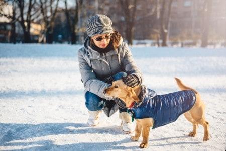 Woman petting dog wearing coat