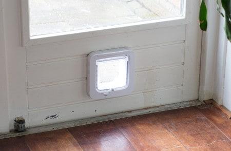 Dog door flap on a light door