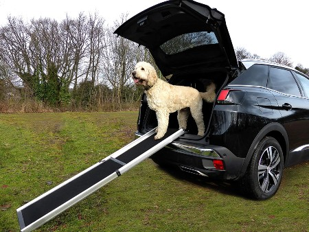 Hewitt And Blue Large Dog Car Ramp