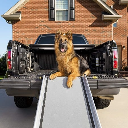 PetSafe Solvit Extra Large Telescopic Pet Ramp