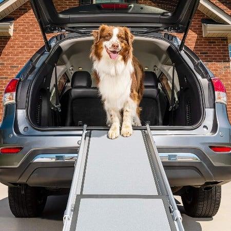 PetSafe Solvit Telescopic Dog Ramp, 99.06 cm - 182.88 cm, Lightweight and Easily Adjustable