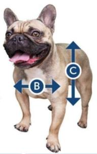 Dog door flap measurements