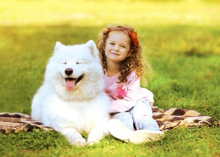 Happy child and dog resting on the grass in warm sunny day