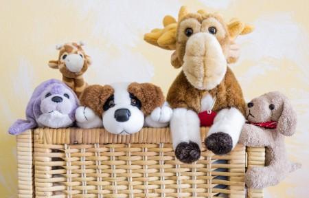 basket full of pet toys