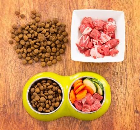 health dog food