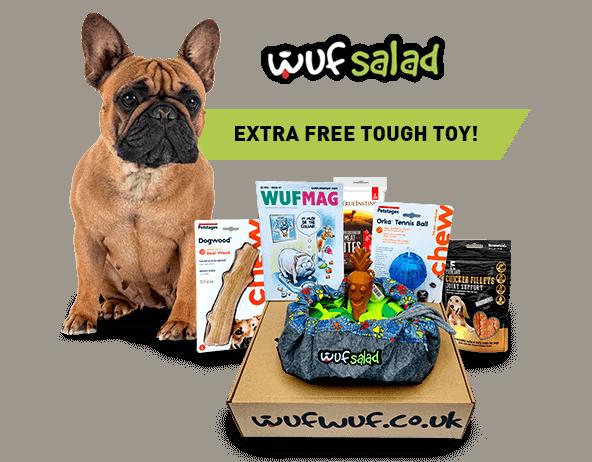 Sample Wufwuf box of dog toys