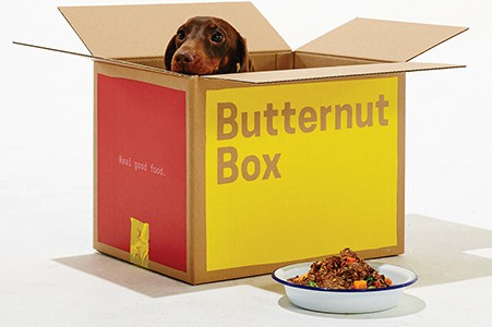 Butternut box dog food boxes