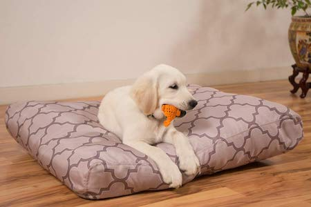 white dog with toy in mouth lying on bed