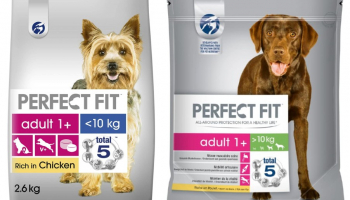 Ava Dog Food Reviewed Does It Provide The Nutrition Your Dog Needs